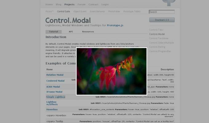 controlmodal.JPG