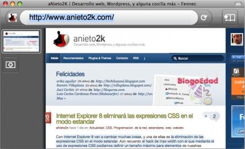 fennec_anieto2k